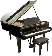Axal d m nagement piano coffre fort oeuvre d 39 art self for Garde meuble piano